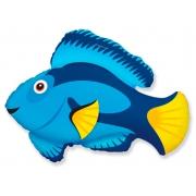 Голубая рыбка, гелиевый, фольгированный шар